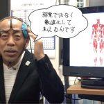 メタトロン波動療法でわかる筋肉の状態