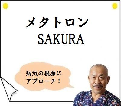 メタトロン SAKURA