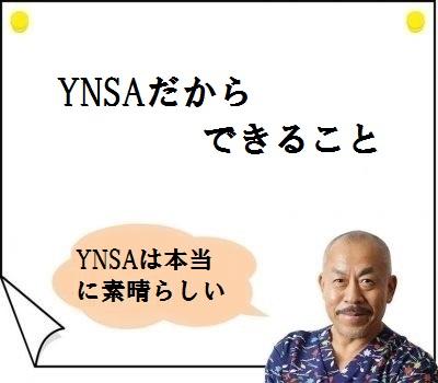 YNSAだからできる